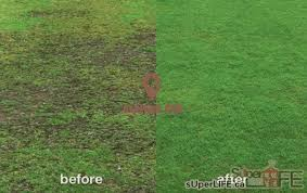 simply lawn care