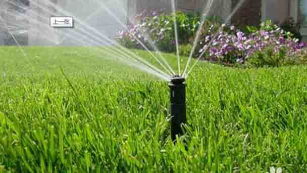 Attentions for simply lawn care