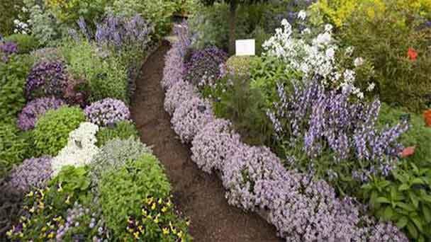 Ideas about outdoor herb garden