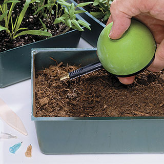 Hand Seeder