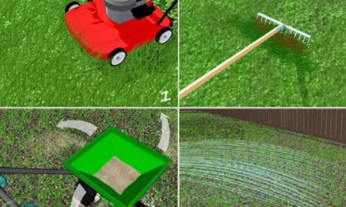 5 best lawn care tools