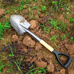 10 best garden tools