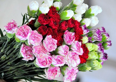 6 best flowers for mother's day