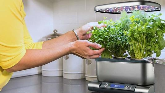 8 best grow lights for indoor plants