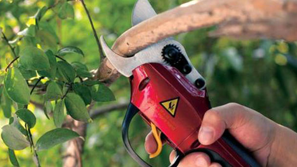 How to use electric shrub and hedge trimmer