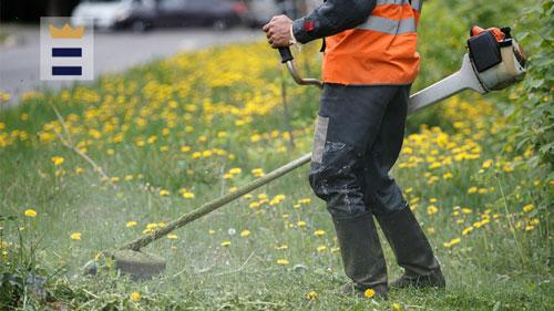 Things to Know About Electric Edgers for Your Lawn