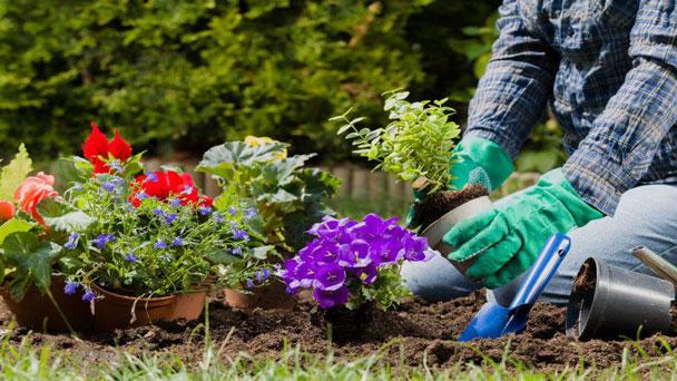 10 Best Gardening Tools in 2021