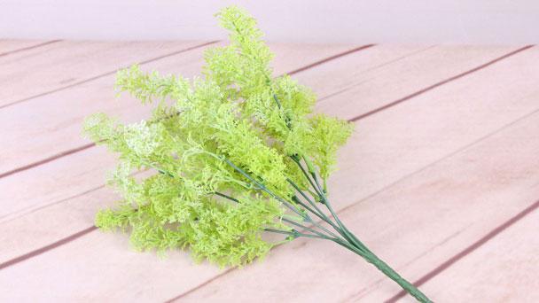 Fennel: Grow & Care for Foeniculum vulgare