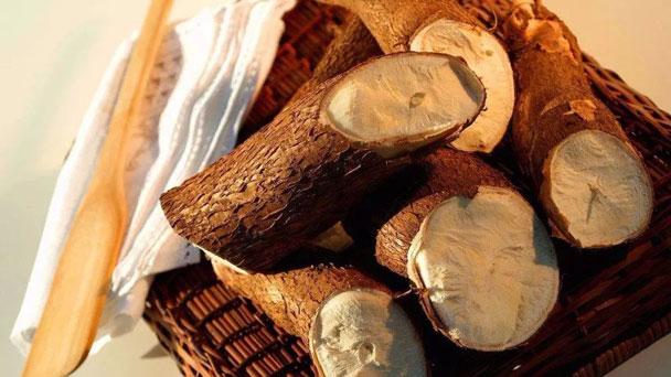 Cassava: Grow & Care for Manihot esculenta