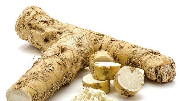 Horseradish (Armoracia rusticana) Profile