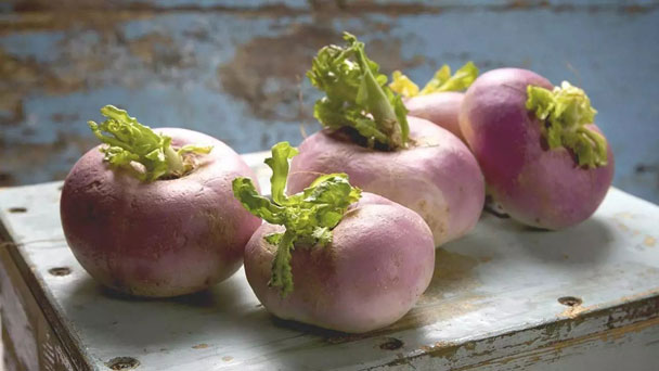 How to Grow & Care for Rutabaga (Brassica napus)