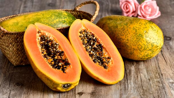 Papaya (Carica papaya) Profile