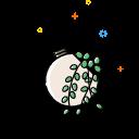 Angiosperms Plants